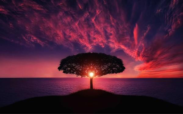 dawn-dusk-thumb